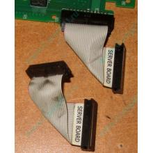6017B0045701 Шлейф 24 pin для Intel C74974-401 T0043401-B01 корпуса SR2400 (Уфа)