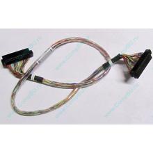 """6017B0045301 в Уфе, 68pin SCSI кабель 26.5"""" / 57cm для корзины HDD Intel SR2400 (Уфа)"""