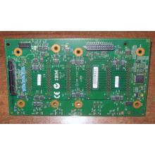 24P2578 FRU 59P5159 IBM xSeries UW320 SCSI 6HDD backplane (Уфа)