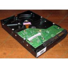 Жесткий диск 500Gb WD WD5000AAKX HP 634605-003 613208-001 7.2k SATA (Уфа)